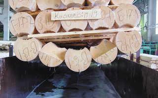 Можно ли обрабатывать древесину антисептиком зимой
