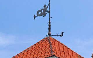 Показывает направление ветра на крыше
