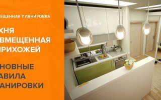 Кухня совмещенная с прихожей